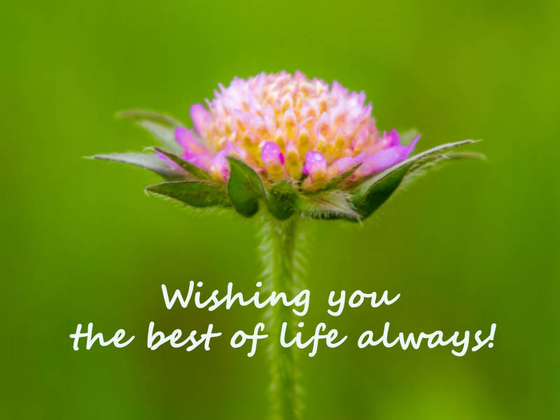Wishing you the best of life always!