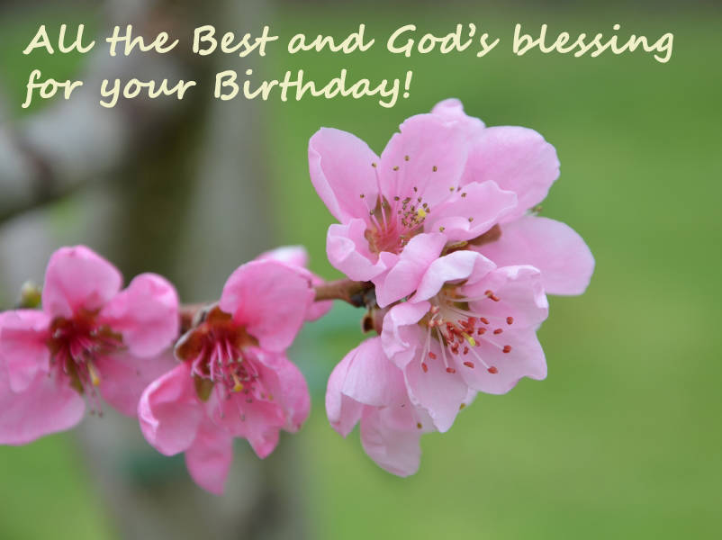 All the Best and God's blessing for your Birthday!