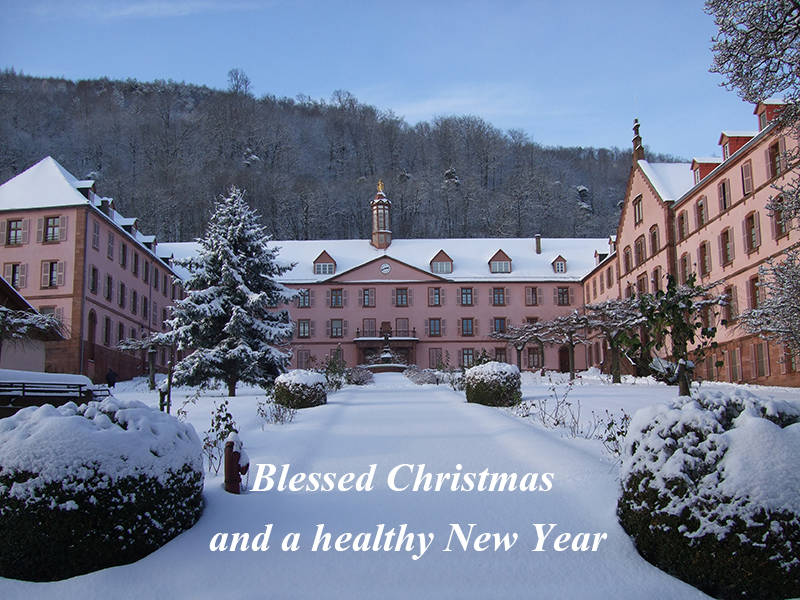 Blessed Christmas and a healthy New Year